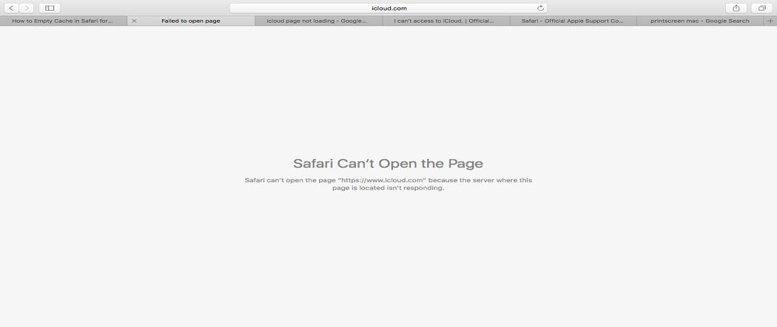 Safari Not Working